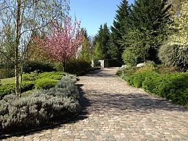 Entretien jardin service jardins bas rhin for Entretien jardin haut rhin